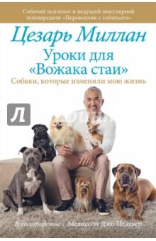 Уроки для Вожака стаи знаменитости в челябинске