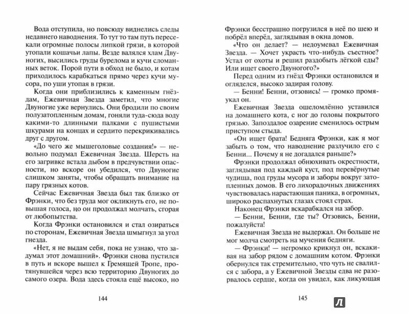 Иллюстрация 1 из 31 для Гроза Ежевичной Звезды. Вода и кровь - Эрин Хантер | Лабиринт - книги. Источник: Лабиринт