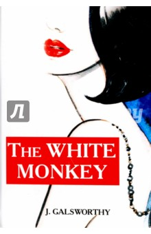 The White Monkey validity issues in translating instruments acrosslanguages and cultures