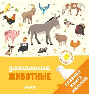 Главная книга малыша. Домашние животные, Бессон Агнес