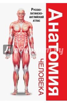 Анатомия человека. Русско-латинско-английский атлас перез в худож большой атлас анатомии человека