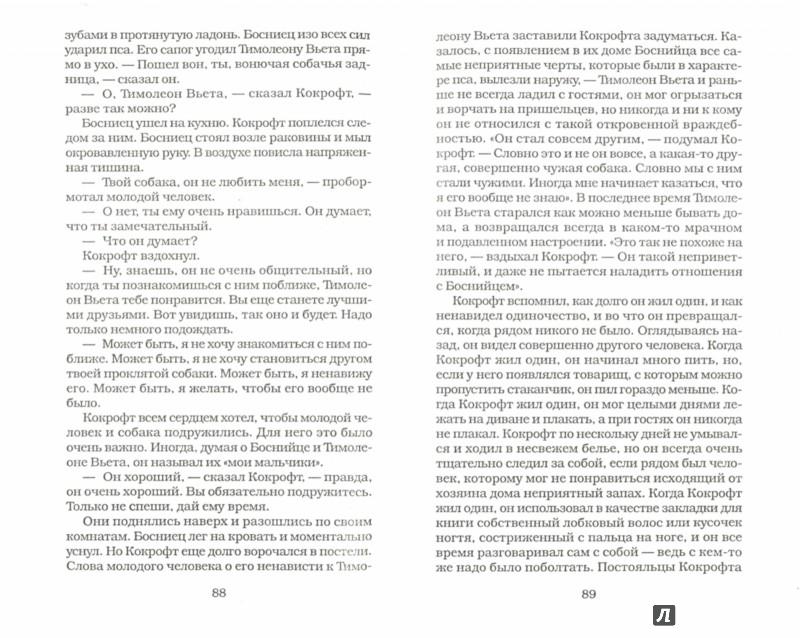 Иллюстрация 1 из 6 для Тимолеон Вьета. Сентиментальное путешествие - Дан Родес | Лабиринт - книги. Источник: Лабиринт