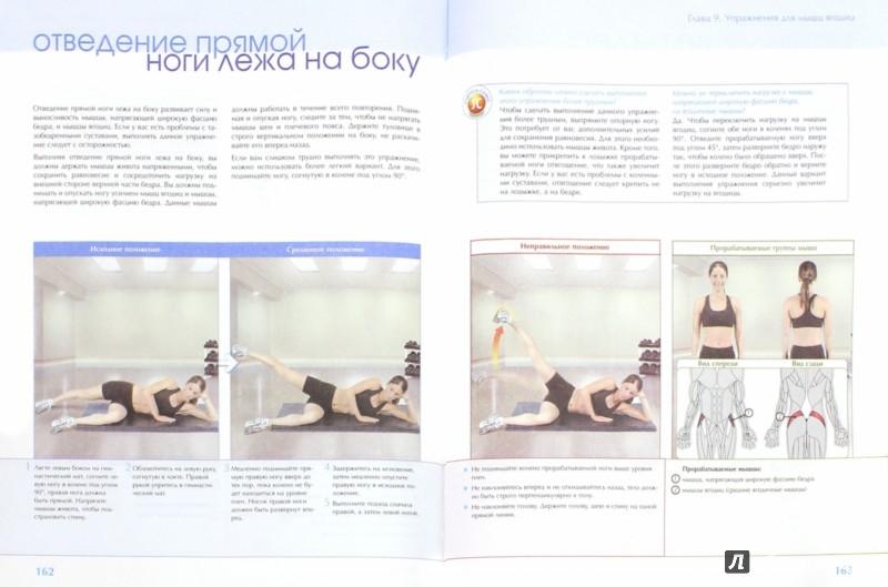 Иллюстрация 1 из 49 для Силовые тренировки. Визуальный самоучитель - Рут Маран   Лабиринт - книги. Источник: Лабиринт