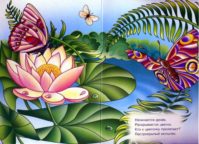 Иллюстрация 1 из 5 для Бабочки и мотыльки | Лабиринт - книги. Источник: Лабиринт