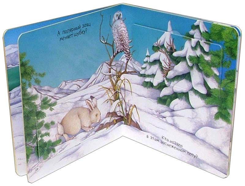 Иллюстрация 1 из 18 для Среди снегов. Кто это там - Эмили Бомон | Лабиринт - книги. Источник: Лабиринт