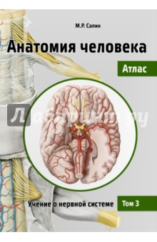 Анатомия человека. Атлас. Учебное пособие. В 3-х томах. Том 3. Учение о нервной системе анатомия по пирогову атлас анатомии человека в 3 х томах том 1 верхн конечн ниж конечн cd