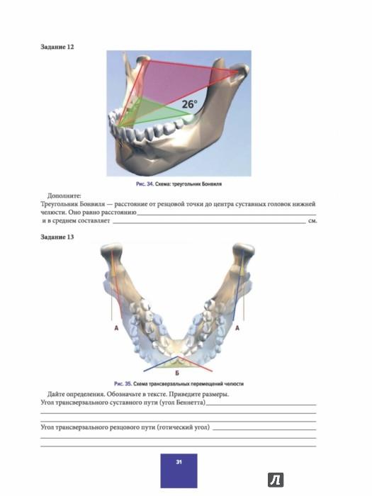 Шпаргалки По Анатомии Для Зубных Техников