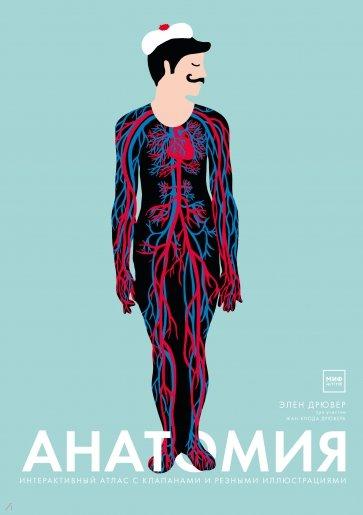 Анатомия, Элен Дрювер