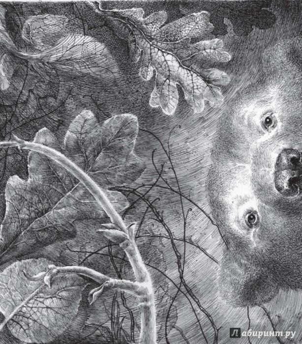 Иллюстрация 1 из 28 для Когда мне хочется молчать - Зорница Христова | Лабиринт - книги. Источник: Лабиринт