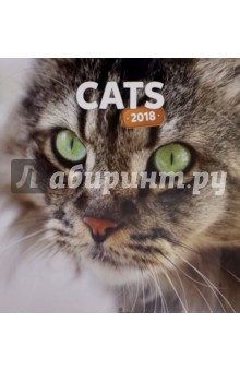 2018 Календарь Cats 30*30 (PGP-4747-V) миска cats 0 3л 30 1099009