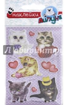 Купить Яркие наклейки Кошки и предметы (WPS07), Липуня, Наклейки детские
