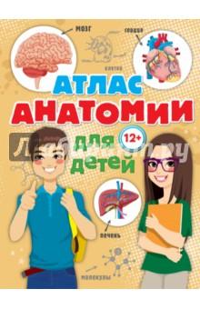 Атлас анатомии для детей издательство аст большие книги для умных малышей