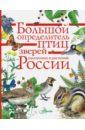 Большой определитель зверей, амфибий, рептилий, Волцит Петр Михайлович