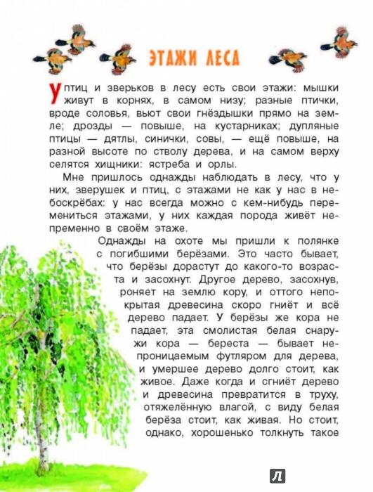 Иллюстрация 3 из 62 для Рассказы о природе - Михаил Пришвин | Лабиринт - книги. Источник: Лабиринт
