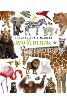 Животные бологова в моя большая книга о животных 1000 фотографий