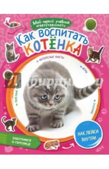 Как воспитать котенка + наклейки внутри как правильно и выбрать новый автомобиль