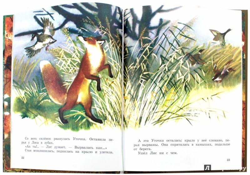 Иллюстрация 1 из 26 для Теремок - Виталий Бианки | Лабиринт - книги. Источник: Лабиринт