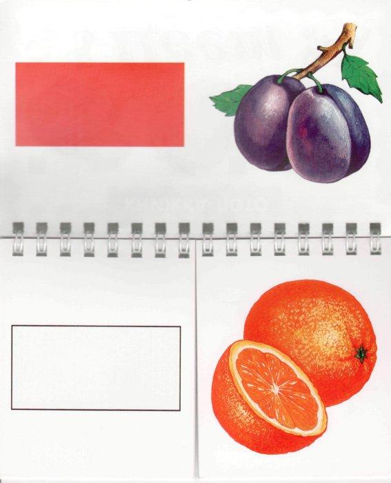 Иллюстрация 1 из 6 для Цвет | Лабиринт - книги. Источник: Лабиринт