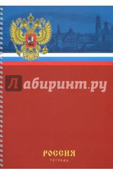 Тетрадь для конспектов 80 листов, А4, спираль Государственная символика (ТС4804297)