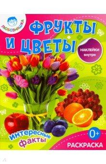 Фрукты и цветы. Раскраска + наклейки