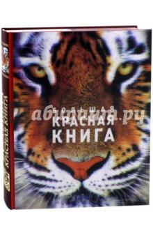 Большая красная книга (стерео-вариант) бологова в ред моя большая книга о животных 1000 фотографий