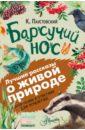 Барсучий нос, Паустовский Константин Георгиевич