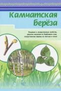 Камчатская береза