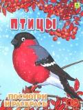 Птицы. Детская раскраска