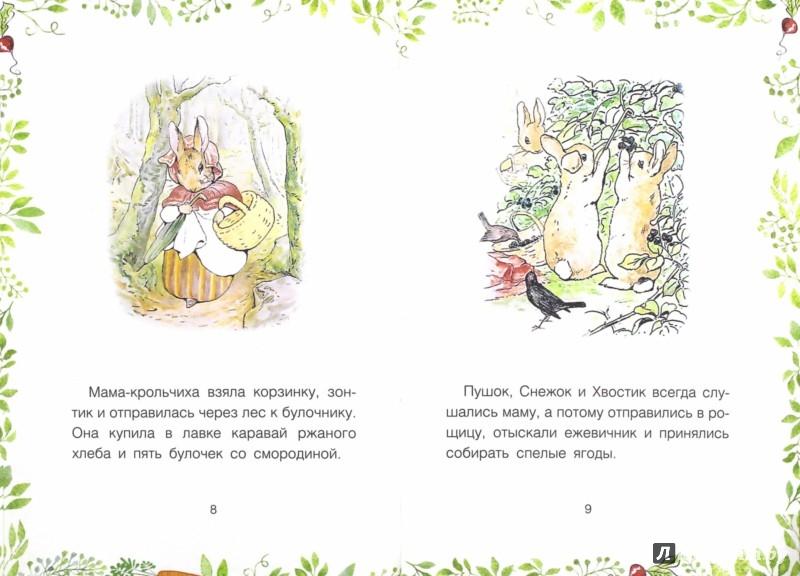 Иллюстрация 1 из 10 для История о кролике Питере - Беатрис Поттер | Лабиринт - книги. Источник: Лабиринт