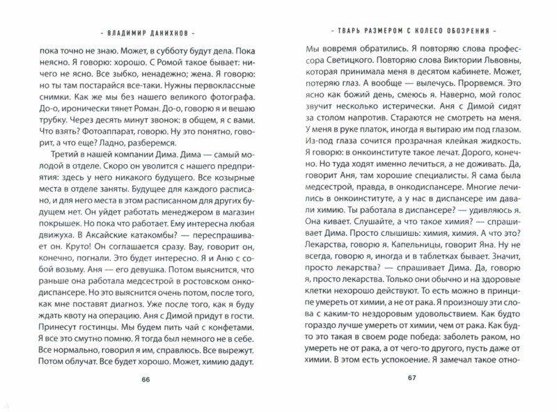 Иллюстрация 1 из 6 для Тварь размером с колесо обозрения - Владимир Данихнов | Лабиринт - книги. Источник: Лабиринт