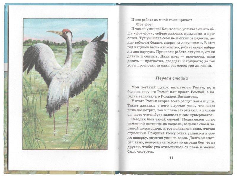 Иллюстрация 1 из 10 для Ребята и утята - Михаил Пришвин | Лабиринт - книги. Источник: Лабиринт