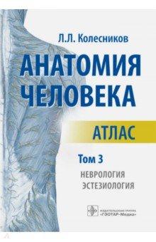 Анатомия человека. Атлас. В 3-х томах. Том 3. Неврология, эстезиология анатомия по пирогову атлас анатомии человека в 3 х томах том 1 верхн конечн ниж конечн cd