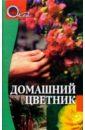 Белозерская Э. Домашний цветник