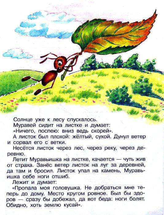 Скачать книгу бианки как муравьишка домой спешил