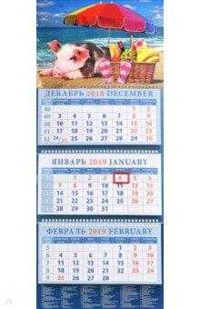 Календарь квартальный на 2019 год Год поросенка. На пляже (14903)