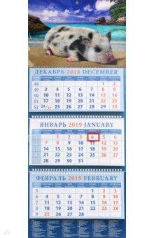 Календарь квартальный на 2019 год Год поросенка. Отдых на морском песочке (14905)