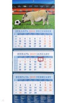 Календарь квартальный на 2019 год Год поросенка - год футбола (14911)