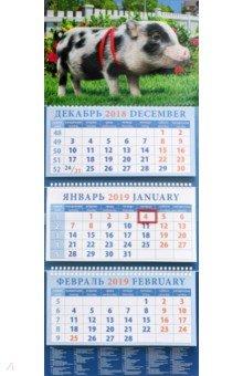 Календарь квартальный на 2019 год Год поросенка. В саду (14913)