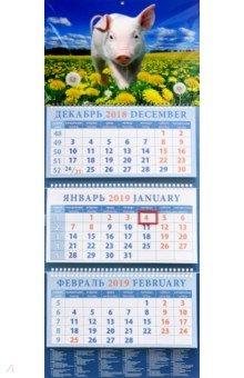 Календарь квартальный на 2019 год Год поросенка. На просторе (14915)