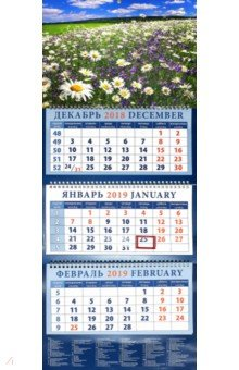 izmeritelplus.ru: Календарь 2019 Пейзаж с ромашками и колокольчиками (14956).