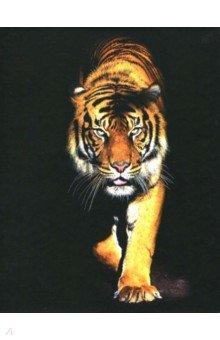 Тетрадь на кольцах Тигр (120 листов, клетка) (819028) тетрадь блочная 120 листов stila nature деревья а5 105640
