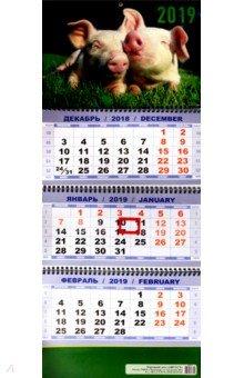 izmeritelplus.ru: Квартальный календарь на 2019 год Символ года. Дуэт.