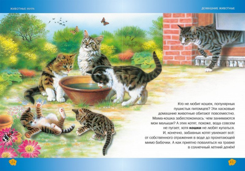 Иллюстрация 1 из 20 для Лучшая энциклопедия животных для детей - Пере Ровира | Лабиринт - книги. Источник: Лабиринт