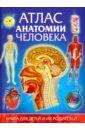 Гуиди Винченцо Атлас анатомии человека. Книга для детей и их родителей