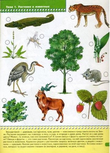 Иллюстрация 1 из 34 для Я изучаю природу. Развитие и обучение детей от 3 до 4 лет   Лабиринт - книги. Источник: Лабиринт