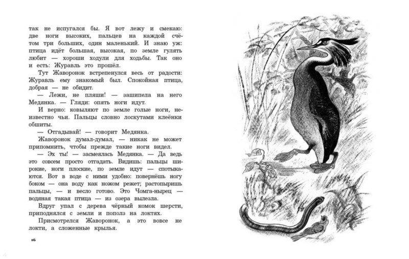 Иллюстрация 1 из 8 для Лесные домишки. Сказки и рассказы - Виталий Бианки | Лабиринт - книги. Источник: Лабиринт