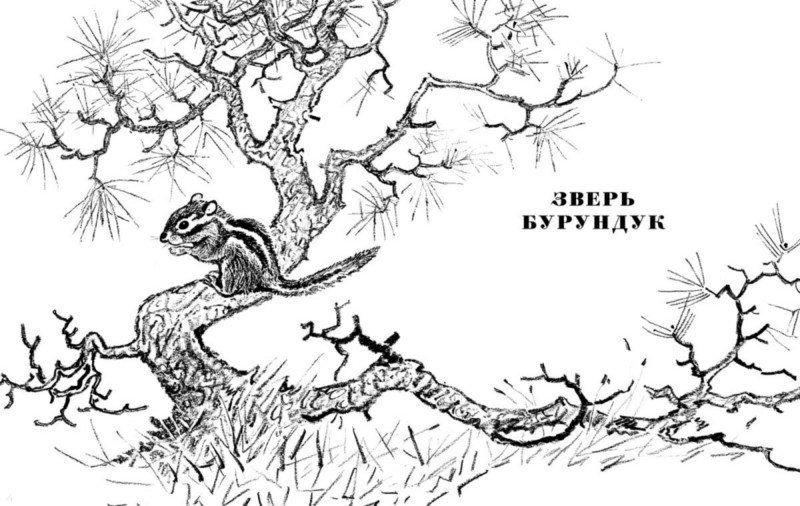 Иллюстрация 1 из 8 для Золотой луг - Михаил Пришвин | Лабиринт - книги. Источник: Лабиринт