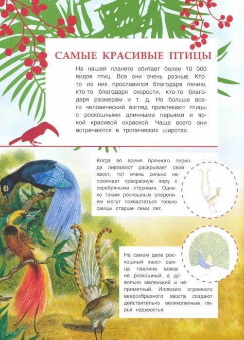 Иллюстрация 1 из 5 для Животные жарких стран - О. Александрова   Лабиринт - книги. Источник: Лабиринт