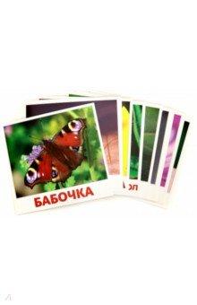 Купить Насекомые (20 карточек), АгаБум, Обучающие игры