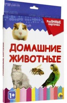 Купить Разумные карточки Домашние животные (20 карточек), Проф-Пресс, Обучающие игры